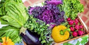 best vegetable juicers