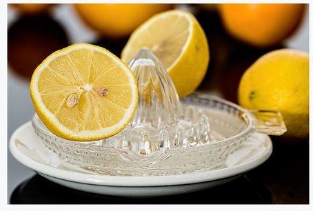 Breville citrus juicer