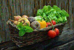 Vegetable And Fruit Juicer